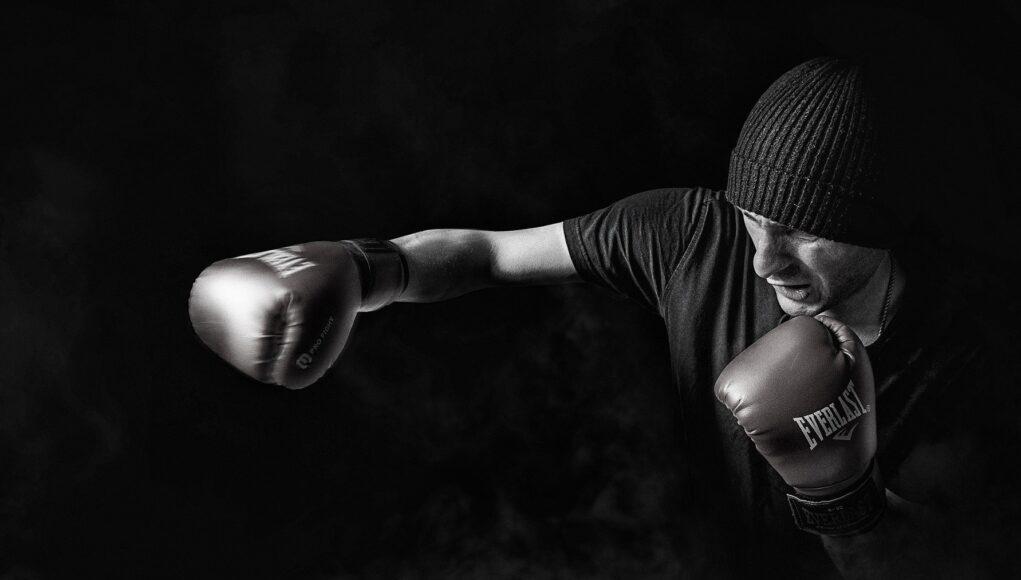 Box Sport Men Training Male People Person Boxer